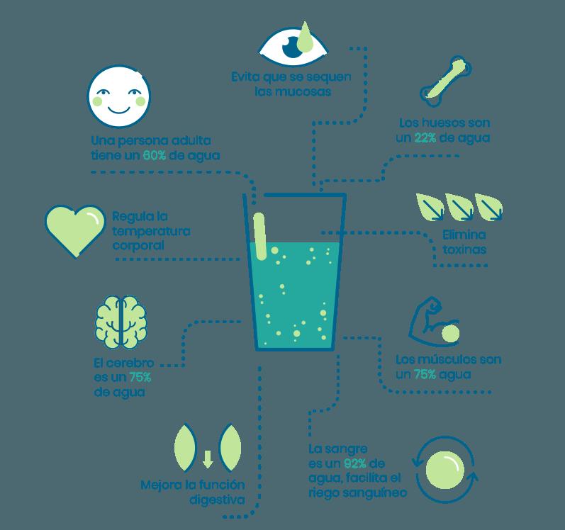 Amamos-el-agua_infografia1.png