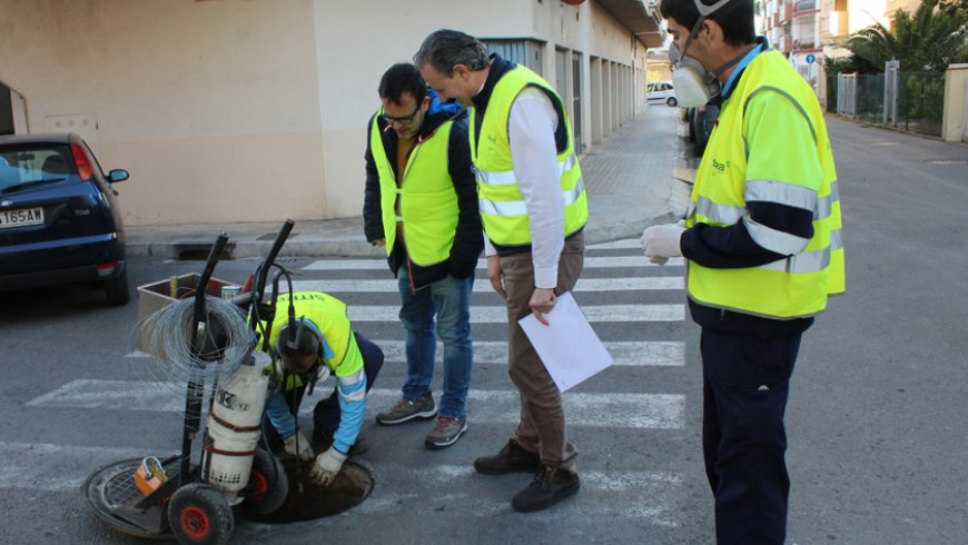 Borriana comienza la campaña de tratamiento preventivo contra ratas y cucarachas