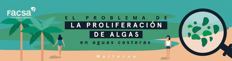 Cabecera_web_FACSA_Jornada_Mallorca.jpg