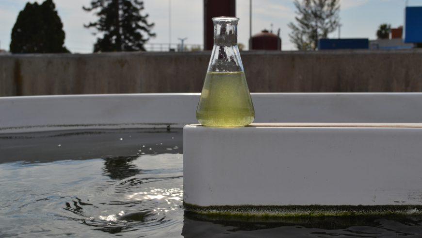 MICROALBAC y Smart Water en las últimas ediciones de la revista TECNOAQUA