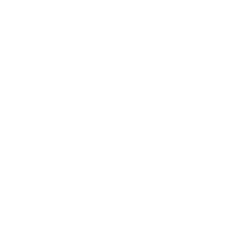 iconos-web-FACSA-02.png